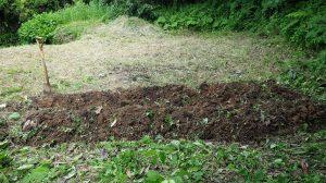 畑プロジェクト