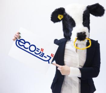 エコジョーズ牛