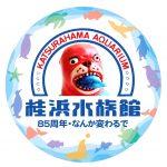 観光シーズンに行く高知の名所【その1】桂浜水族館が思った以上に面白くなってます