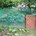 【マインドガス畑プロジェクト】イノシシ対策も万全!?夏場に向かって畑の草引きをしております。