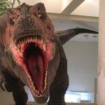 """たまには県外へ!愛媛県総合科学博物館へ""""動く恐竜""""を見に行って来ました!"""