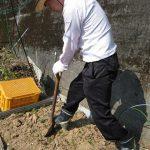 【いいね!サービス】やはり重労働でした。畑の土の堀り起こし作業編。