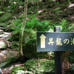 【高知の滝めぐり8 昇龍の滝】まだまだ見所満載。安居渓谷の奥に見た美瀑と釜。