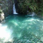 【高知の滝めぐり10 三樽権現の滝】苔むす岩肌と緑が清々しさを感じさせる滝。