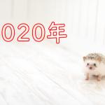 新年あけましておめでとうございます!2020年スタートです!