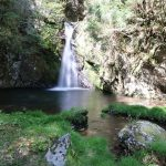 【高知の滝めぐり24 追合の滝】静かに佇む滝。ここは四万十川の源流なんですね。