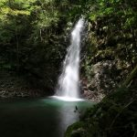 【高知の滝めぐり28 龍王の滝】スポットライトに照らされる滝に感動。