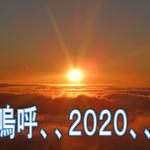 2020年もあとわずか、、。今年の目標の総括をします!