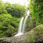 【高知の滝めぐり34 樽の滝】大雨が降ると樽を転がすような音がすることから命名された滝。