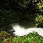 高知の滝めぐり35 七ツ淵】平家落人伝説が残る7つの滝。七淵神社と御参りセットで堪能してきました。